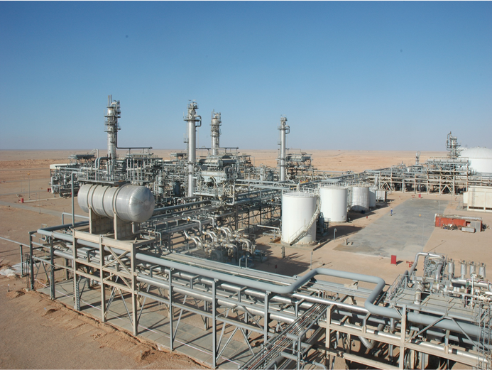 Benfield Gas Sweetening System SCSR-07